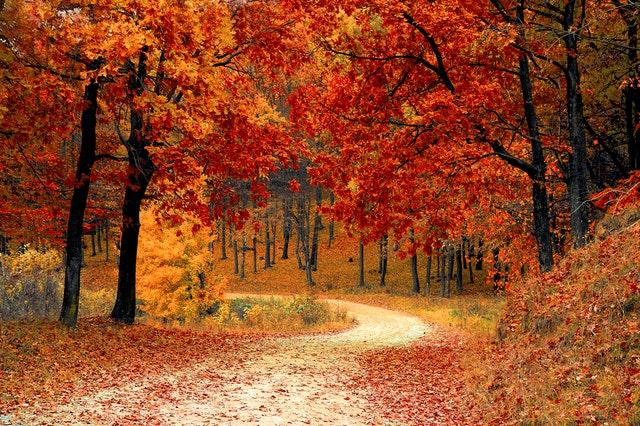 Qué puedo lograr con un Ritual Abre Caminos